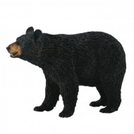 COLLECTA  Amerikas melnais lācis (L), 88698