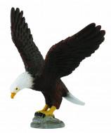 COLLECTA (M) Amerikas baltgalvas ērglis