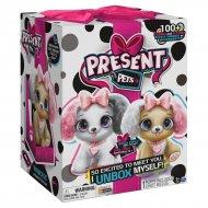 PRESENT PETS Fancy, 6051197 6051197