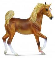 COLLECTA (XL)  Arābu zeltaini brūna ķēve