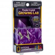 NATIONAL GEOGRAPHIC set Carded Crystal Grow Purple, NGCRYSTALPCRD NGCRYSTALPCRD