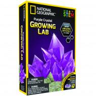 NATIONAL GEOGRAPHIC Kristāla audzēšana Purple, NGPCRYSTAL NGPCRYSTAL
