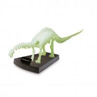 GEOWORLD Apatosaurus skelets, CL287K CL287K