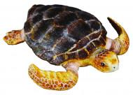 COLLECTA (M) Bruņurupucis 88094
