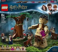 75967 LEGO® Harry Potter™ Aizliegtais mežs: sastapšanās ar Ambrāžu 75967