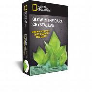 NATIONAL GEOGRAPHIC tumsā spīdošs kristāls Green, NGGIDCRYSTAL NGGIDCRYSTAL