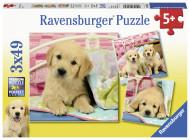 RAVENSBURGER puzle Mīlīgie kucēni, 3x49 gab., 8065 8065